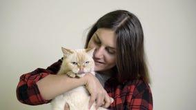 Η γυναίκα φροντίζει μια γάτα στην περιτύλιξή της απόθεμα βίντεο
