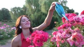 Η γυναίκα φροντίζει τα τριαντάφυλλα απόθεμα βίντεο