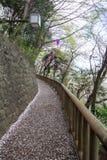 Η διάβαση πεζών διακόσμησε με τα φανάρια φεστιβάλ Sakura στο πάρκο Asukayama στη Kita, Τόκιο, Ιαπωνία την άνοιξη Με τα πέταλα sak Στοκ φωτογραφίες με δικαίωμα ελεύθερης χρήσης