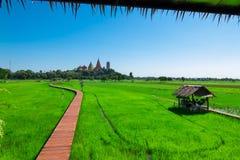 Η διάβαση πεζών στους πράσινους τομείς ρυζιού βλέπει Wat Tham Sua, Kanchanaburi στοκ φωτογραφία με δικαίωμα ελεύθερης χρήσης
