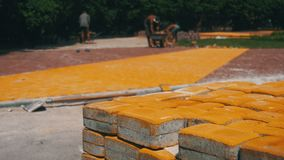 Η διαδικασία οικοδόμησης, που επισκευάζει το πεζοδρόμιο Εργαζόμενος που βάζει την πέτρινη επίστρωση σε ένα πάρκο πόλεων απόθεμα βίντεο