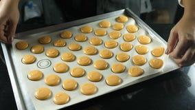 Η διαδικασία macaroons, γαλλικό επιδόρπιο Ζωηρόχρωμα macaroons στην περγαμηνή Προετοιμασία πρίν ψήνει στο φούρνο φιλμ μικρού μήκους