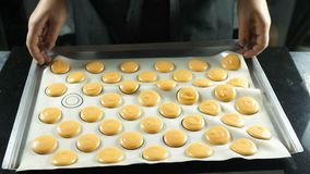 Η διαδικασία macaroons, γαλλικό επιδόρπιο Ζωηρόχρωμα macaroons στην περγαμηνή Προετοιμασία πρίν ψήνει στο φούρνο απόθεμα βίντεο