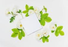 Η διακοσμητική σύνθεση με την κάρτα εγγράφου και άσπρος αυξήθηκε λουλούδια Στοκ Εικόνες
