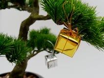Η διακόσμηση ή η διακόσμηση Χριστουγέννων κρεμά στο τεχνητό δέντρο μπονσάι που αποτελείται από το χρυσό και ασημένιο κιβώτιο δώρω Στοκ Εικόνα