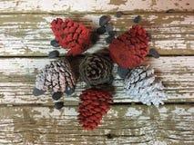 Η διακόσμηση Χριστουγέννων με τους κώνους πεύκων χρωμάτισε τις άσπρες και κόκκινες πέτρες στο ξύλο στοκ εικόνες