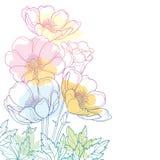 Η διανυσματική ανθοδέσμη γωνιών σχεδίων χεριών με το λουλούδι ή Windflower Anemone περιλήψεων, ο οφθαλμός και το φύλλο στην κρητι ελεύθερη απεικόνιση δικαιώματος