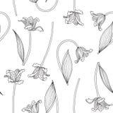 Η διανυσματική απεικόνιση των τουλιπών σκιαγραφεί το άνευ ραφής σχέδιο Στοκ εικόνες με δικαίωμα ελεύθερης χρήσης