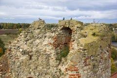 Η διαταγή Castle Livonia χτίστηκε στο μέσο του 15ου αιώνα Μπαούσκα Λετονία το φθινόπωρο Στοκ Εικόνα