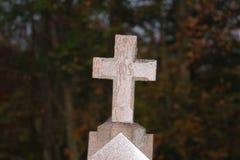 Η δροσιά κάλυψε το σταυρό Στοκ εικόνα με δικαίωμα ελεύθερης χρήσης