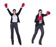 Η εγκιβωτίζοντας επιχειρηματίας που απομονώνεται νέα στο λευκό Στοκ Εικόνες