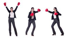 Η εγκιβωτίζοντας επιχειρηματίας που απομονώνεται νέα στο λευκό Στοκ Φωτογραφίες