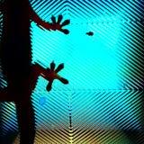 Η εγχώρια σαύρα πίσω από τον καθρέφτη ενός παραθύρου στοκ φωτογραφίες με δικαίωμα ελεύθερης χρήσης