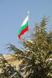 Η εθνική σημαία του κοινοτικού κτηρίου σε Pomorie, Βουλγαρία, χειμώνας Στοκ εικόνα με δικαίωμα ελεύθερης χρήσης