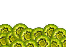 Η εικόνα του ακτινίδιου για τη διακόσμηση Στοκ Εικόνα