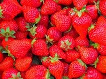 Η εικόνα υποβάθρου της ζωηρής φράουλας στοκ φωτογραφία με δικαίωμα ελεύθερης χρήσης