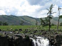 Καταρράκτης στη Μογγολία Στοκ Εικόνες
