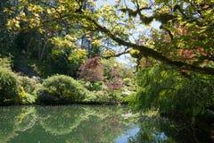 Η ειρηνική λίμνη στο butchart καλλιεργεί, οι Μπους και πράσινα δέντρα, νησί του Βανκούβερ στοκ εικόνες με δικαίωμα ελεύθερης χρήσης