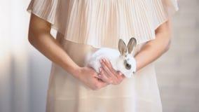 Η εκμετάλλευση γυναικών στο χαριτωμένο άσπρο λαγουδάκι χεριών, παίρνει το ζώο από το κοινωνικό πρόγραμμα καταφυγίων φιλμ μικρού μήκους
