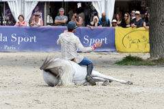 Η εκπαίδευση αλόγου σε περιστροφές αλόγων παρουσιάζει Στοκ Φωτογραφία