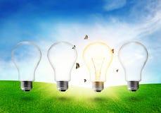 Ηλεκτρική λάμπα φωτός τέσσερα στο λιβάδι η ενέργεια eco έννοιας ανασκόπησης απομόνωσε το λευκό Στοκ εικόνες με δικαίωμα ελεύθερης χρήσης