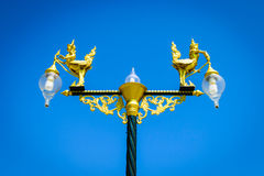 Ηλεκτρικός λαμπτήρας οδών στο πάρκο Στοκ εικόνα με δικαίωμα ελεύθερης χρήσης