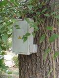 Ηλεκτρικό δέντρο Στοκ φωτογραφία με δικαίωμα ελεύθερης χρήσης