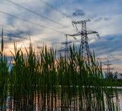 Ηλεκτροφόρα καλώδια στην ακτή των καλάμων στο ηλιοβασίλεμα, ποταμός Στοκ Εικόνα