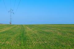Ηλεκτροφόρο καλώδιο, πράσινος τομέας με το μπλε ουρανό Στοκ Εικόνες