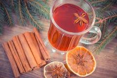 Η εκλεκτής ποιότητας φωτογραφία, θερμαμένο κρασί για το βράδυ Χριστουγέννων ή χειμώνα με τα καρυκεύματα και τις ερυθρελάτες διακλ Στοκ εικόνες με δικαίωμα ελεύθερης χρήσης