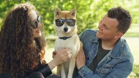 Η ελκυστική γυναίκα και ο σύζυγός της παίζουν με το σκυλί που βάζει τα γυαλιά ηλίου σε το, που χαϊδεύει τη γούνα της και που κτυπ απόθεμα βίντεο