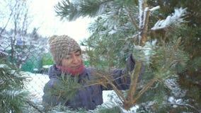 Η ελκυστική γυναίκα που κρατά και που φέρνει το μεγάλο κλάδο του πεύκου με το χιόνι σε την για τη Χαρούμενα Χριστούγεννα και ευτυ απόθεμα βίντεο