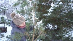 Η ελκυστική γυναίκα που φέρνει το μεγάλο κλάδο του πεύκου με το χιόνι σε την για τη Χαρούμενα Χριστούγεννα και καλή χρονιά φιλμ μικρού μήκους