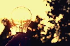 η ενέργεια δύναμης στη φύση και η λάμπα φωτός με την έννοια ηλιοβασιλέματος εκλέγουν Στοκ Εικόνα