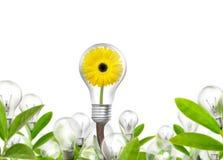 η ενέργεια eco έννοιας ανασκόπησης απομόνωσε το λευκό Στοκ Εικόνα