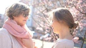 Η ενήλικη κόρη ισιώνει το ρόδινο μαντίλι στο ώριμο mom της Πορτρέτο άνοιξη, ημέρα της μητέρας, φροντίδα των παιδιών και ευχαριστί απόθεμα βίντεο