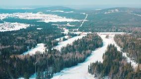 Η εναέρια άποψη της κλίσης σκι και οι άνθρωποι που σε ένα σκι ακολουθούν με τα κωνοφόρα δέντρα και από την την δύο πλευρά της δια απόθεμα βίντεο