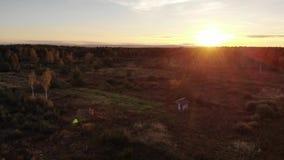 Η εναέρια άποψη του λιβαδιού φθινοπώρου, το τοπίο, το ηλιοβασίλεμα και ο φυσικός φακός καίγονται την επίδραση, πτήση πίσω φιλμ μικρού μήκους