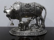 Η ενσάρκωση παιδιών του Λόρδου Krishna με την αγάπη για την αγελάδα και την αγελάδα στην όμορφη ασημένια αποικία στοκ φωτογραφία