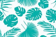 Η εξωτική τροπική διακόσμηση σχεδίων πρασινάδων βοτανική με το monstera φοινίκων ζουγκλών αφήνει το Βοημίας υπόβαθρο ντεκόρ απεικόνιση αποθεμάτων
