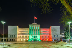 25η επέτειος της υπεράσπισης της ελευθερίας της Λιθουανίας Στοκ φωτογραφία με δικαίωμα ελεύθερης χρήσης