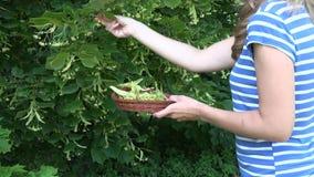 Η επιλογή γυναικών τα χορτάρια στο ψάθινο πιάτο 4K φιλμ μικρού μήκους