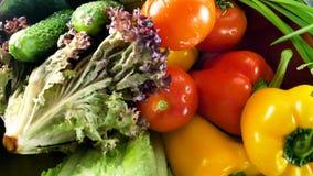 Ανάμεικτα φρέσκα λαχανικά και χορτάρια Η επιλογή περιλαμβάνει τα καρότα, πατάτες, αγγούρι, ντομάτα, λάχανο, μαρούλι, τεύτλα απόθεμα βίντεο