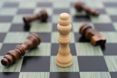 Η επιτροπή σκακιού με το λευκό βασιλιά στέκεται τους άλλους Μαύρους καθορίζει Στοκ εικόνα με δικαίωμα ελεύθερης χρήσης