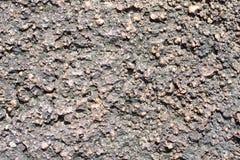 Η επιφάνεια laterite Στοκ Φωτογραφίες