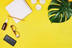 Η επιχείρηση flatlay με το κινητό τηλέφωνο, γυαλιά, philodendron βγάζει φύλλα και άλλα εξαρτήματα στοκ εικόνες