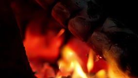 Η εστία, ξύλινο κάψιμο, κλείνει επάνω, βάζει φωτιά φιλμ μικρού μήκους