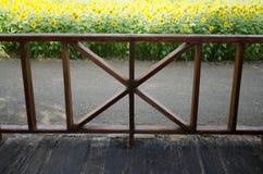 Η εσωτερική άποψη βλέπει στο μπροστινό μέρος, λουλούδι ήλιων Στοκ Φωτογραφίες