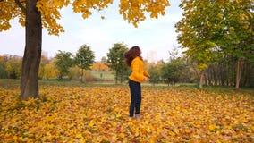 Η ευτυχής γυναίκα απολαμβάνει τα φύλλα φθινοπώρου βλέποντας, κίτρινα δέντρα σφενδάμνου απόθεμα βίντεο