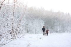 Η ευτυχής οικογένεια περπατά με ένα σκυλί huskies στοκ εικόνα